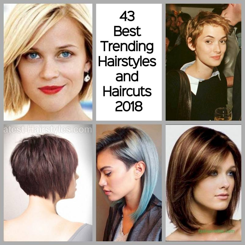 In this gallery you will find hairstyles for all seasons