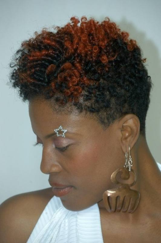 natural hair styles that all naturalistas must try! iamtraeh pic 1