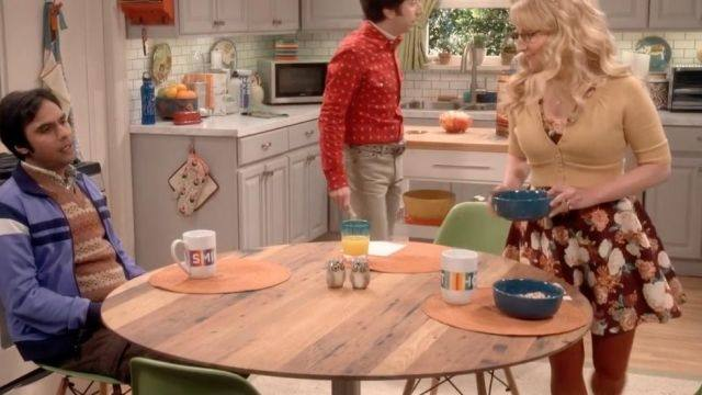 A scene from the sitcom The Big Bang Theory